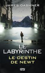 Vente Livre Numérique : Le Labyrinthe : Le destin de Newt  - Dashner James