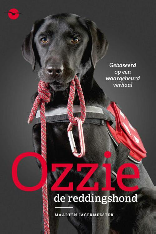 Ozzie, de reddingshond