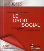 Vente Livre Numérique : Les Zoom's. Le Droit social 2014-2015 -16e édition  - Dominique Grandguillot