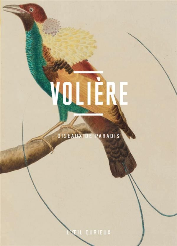 Volière ; oiseaux de paradis
