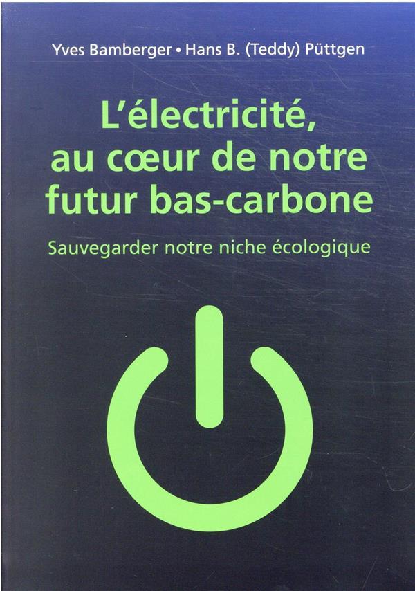 électricité : vers un futur décarboné