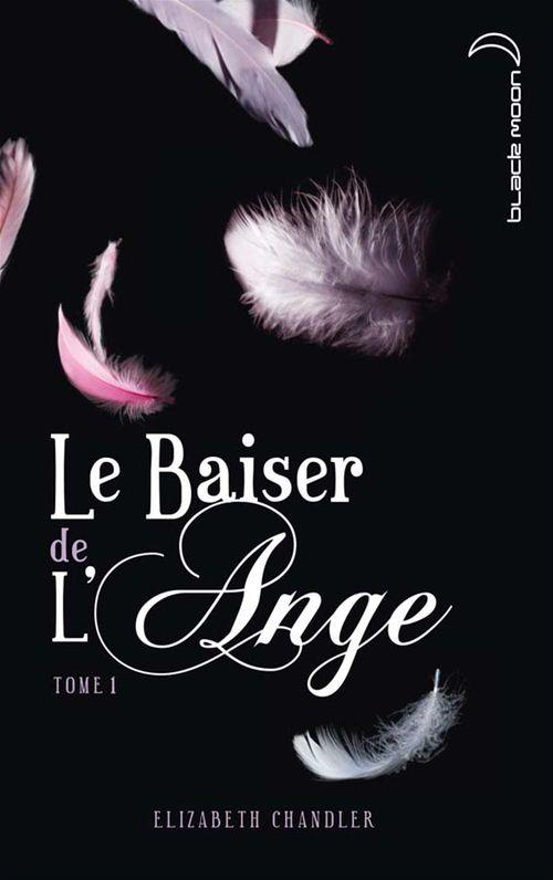 Le baiser de l'ange t.1 ; l'accident