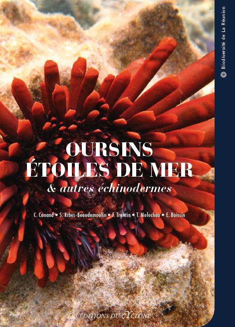 oursins, étoiles de mer, et autres échinodermes de La Réunion