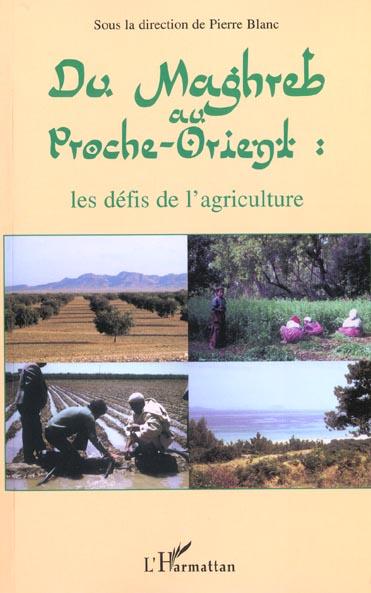 Vente EBooks : DU MAGHREB AU PROCHE-ORIENT : les défis de l'agriculture  - Pierre BLANC