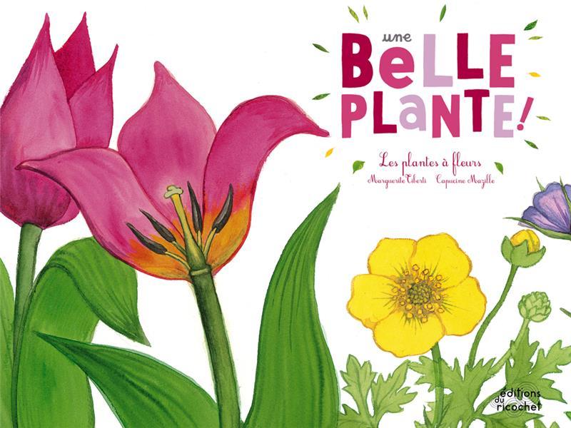 Une belle plante ; les plantes à fleurs