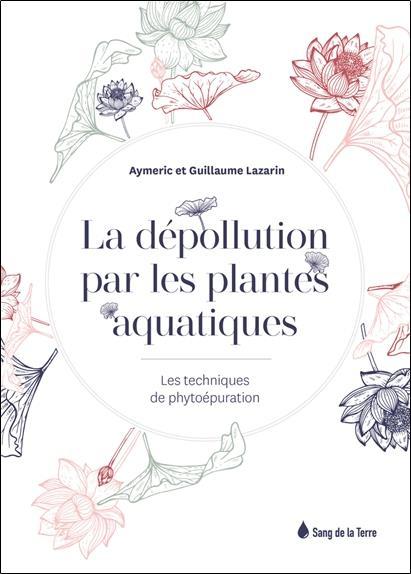 La dépollution par les plantes aquatiques : les techniques de phytoépuration