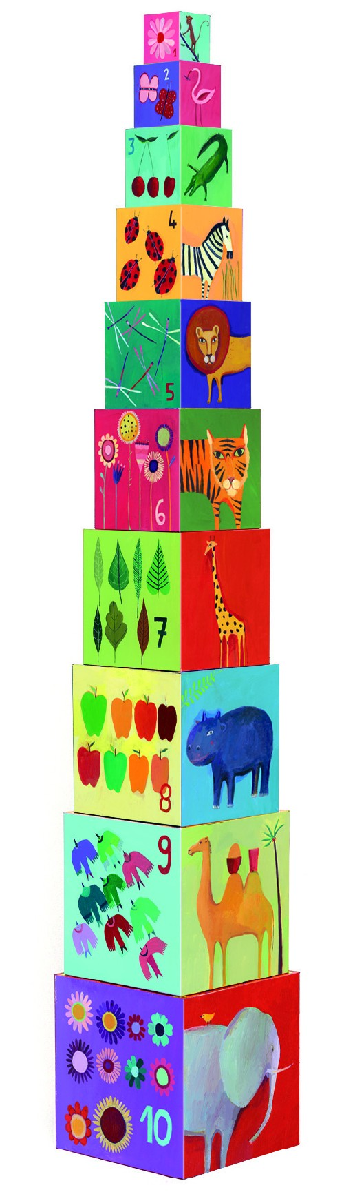 10 cubes nature & animaux
