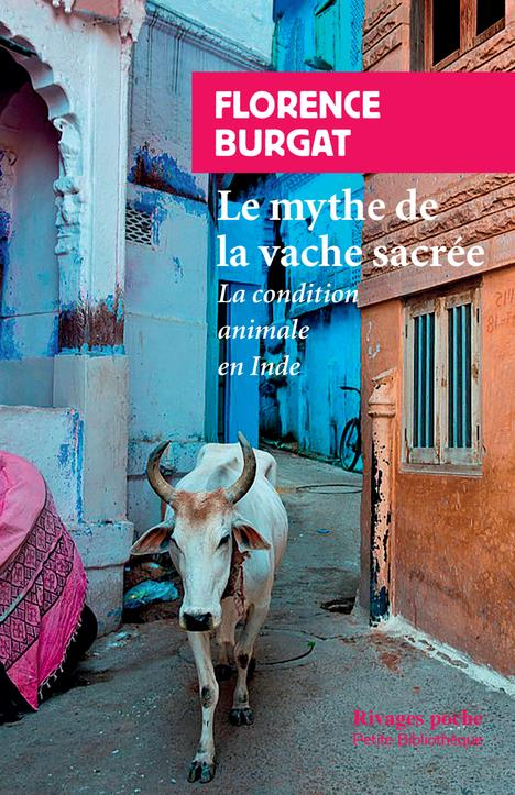 Le mythe de la vache sacrée ; la condition animale en Inde