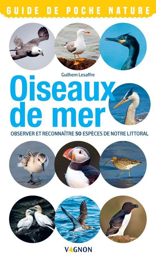 Oiseaux de bord de mer ; observer et reconnaître 50 espèces de notre littoral