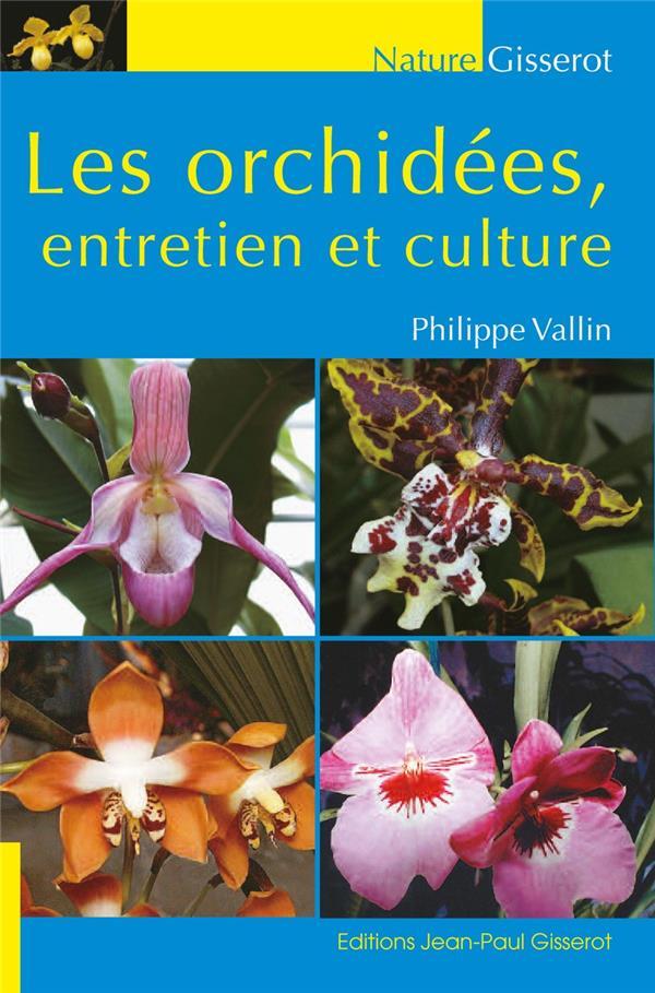 Les orchidées, entretien et culture