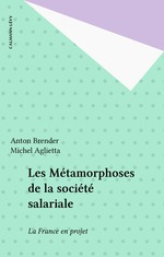 Vente Livre Numérique : Les Métamorphoses de la société salariale  - Michel Aglietta - Anton BRENDER