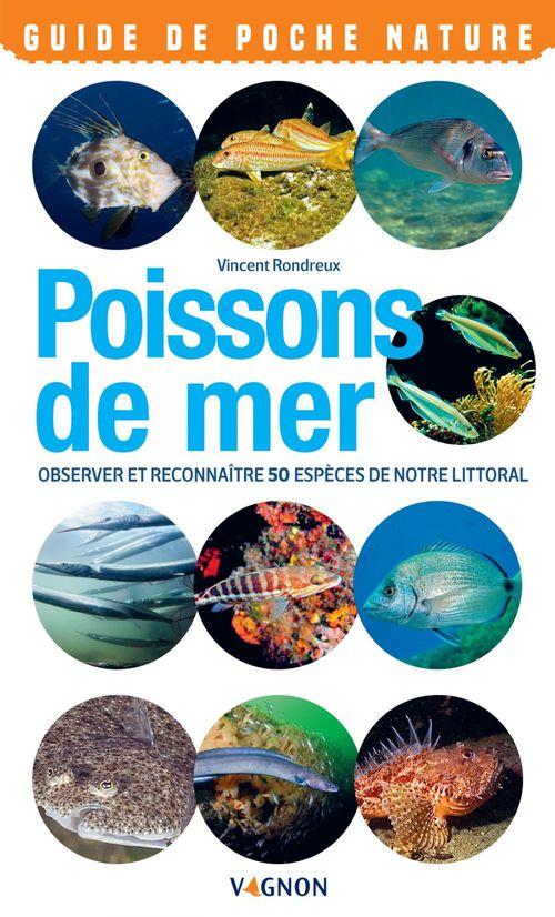 Poissons de mer ; observer et reconnaître 50 espèces de notre littoral
