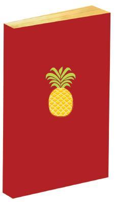 Carnet ananas brodé