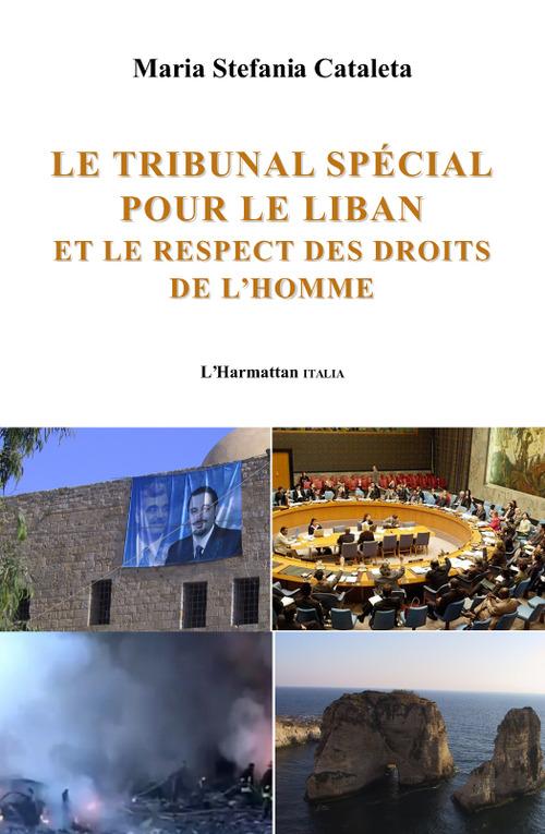 Le tribunal spécial pour le Liban et le respect des droits de l'homme