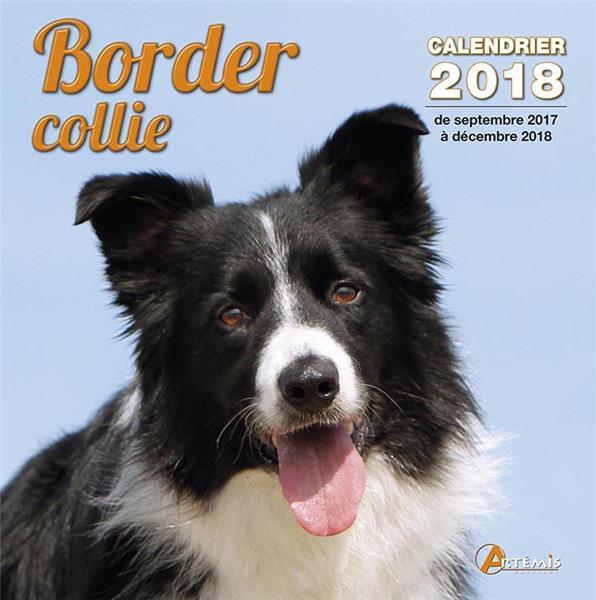 Border collie (édition 2018)