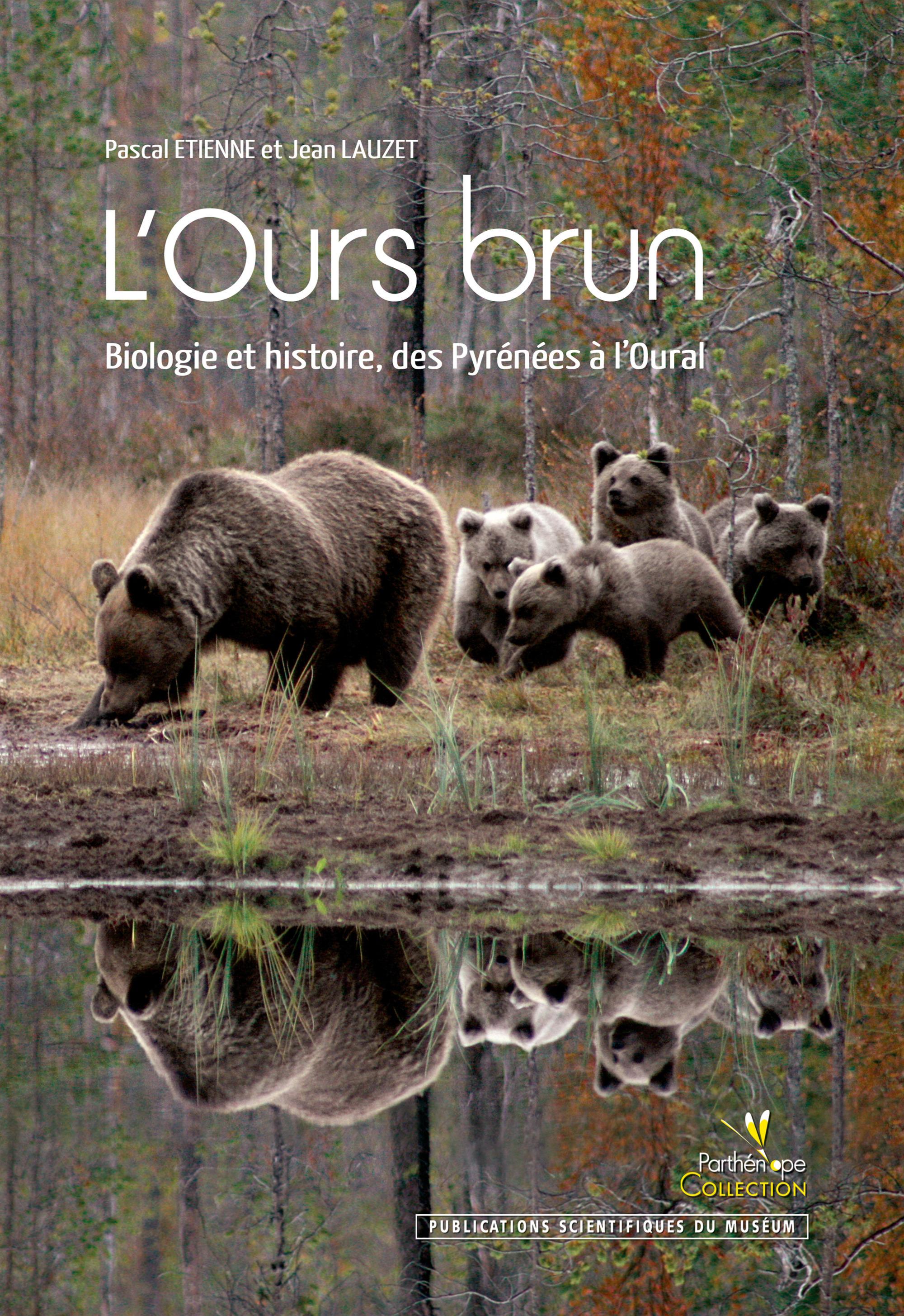 L'ours brun ; biologie et histoire ; des Pyrénées à l'Oural