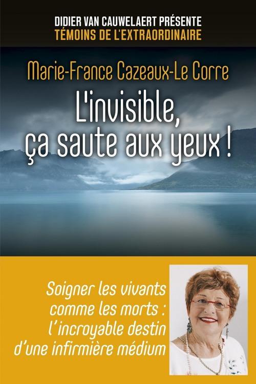 L'invisible, ça saute aux yeux !  - Marie-France Cazeaux-Le Corre