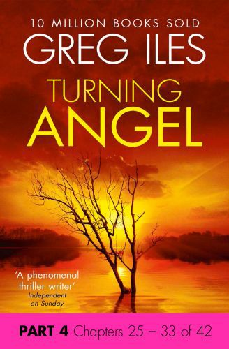 Turning Angel: Part 4, Chapters 25 to 33