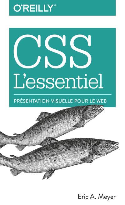 CSS l'essentiel ; présentation visuelle pour le web