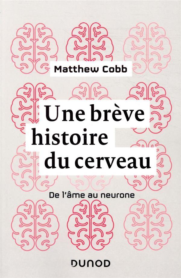 Une brève histoire du cerveau ; de l'âme au neurone