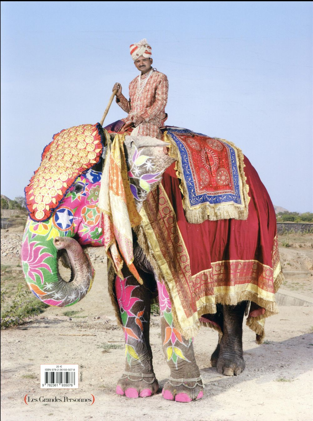 Parade, les éléphants peints de Jaipur