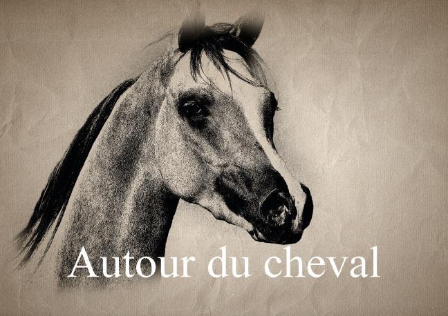 Autour du cheval (Livre poster DIN A3 horizontal)