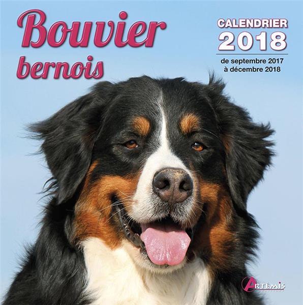 Bouvier bernois (édition 2018)