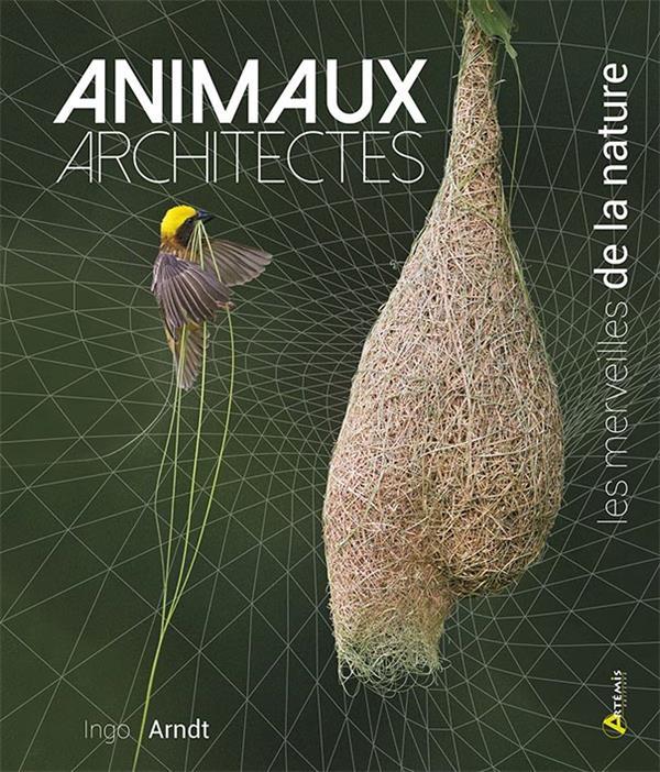Animaux architectes, les merveilles de la nature