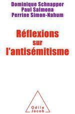 Vente Livre Numérique : Réflexions sur l´antisémitisme  - Paul SALMONA - Perrine Simon-Nahum - Dominique Schnapper
