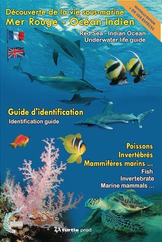 guide océan Indien-Mer rouge