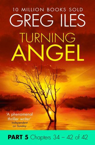 Turning Angel: Part 5, Chapters 34 to 42