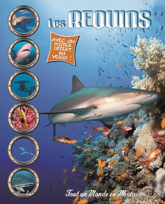 Tout un monde en photos ; les requins