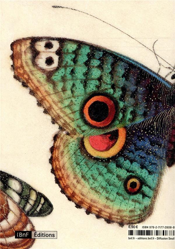 Papillons ; messagers éphémères