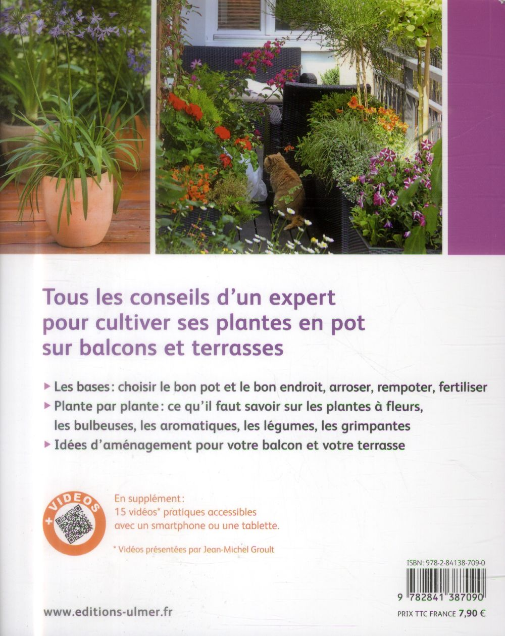 Jardiner sur mon balcon ; l'essentiel pour réussir la culture des plantes en pot