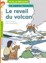 Vente Livre Numérique : Le réveil du volcan  - Benoît Broyart