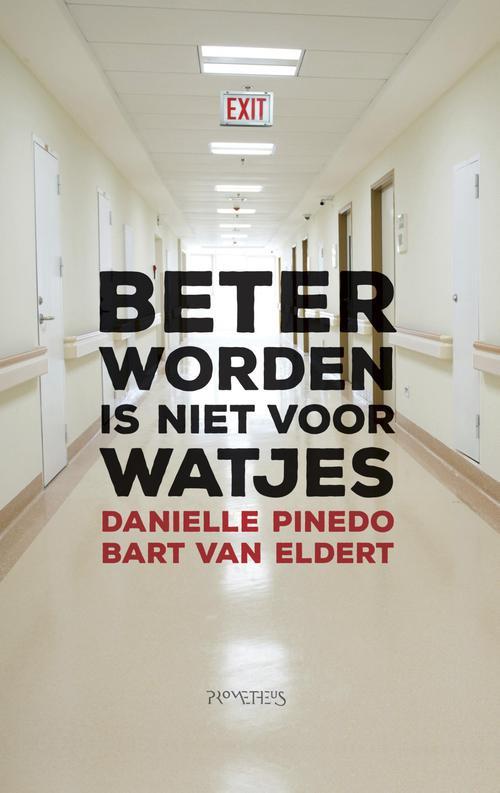 Beter worden is niet voor watjes - Danielle Pinedo, Bart van Eldert - ebook