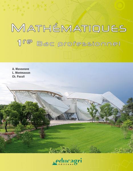 mathématiques : bac professionnel ; 1re