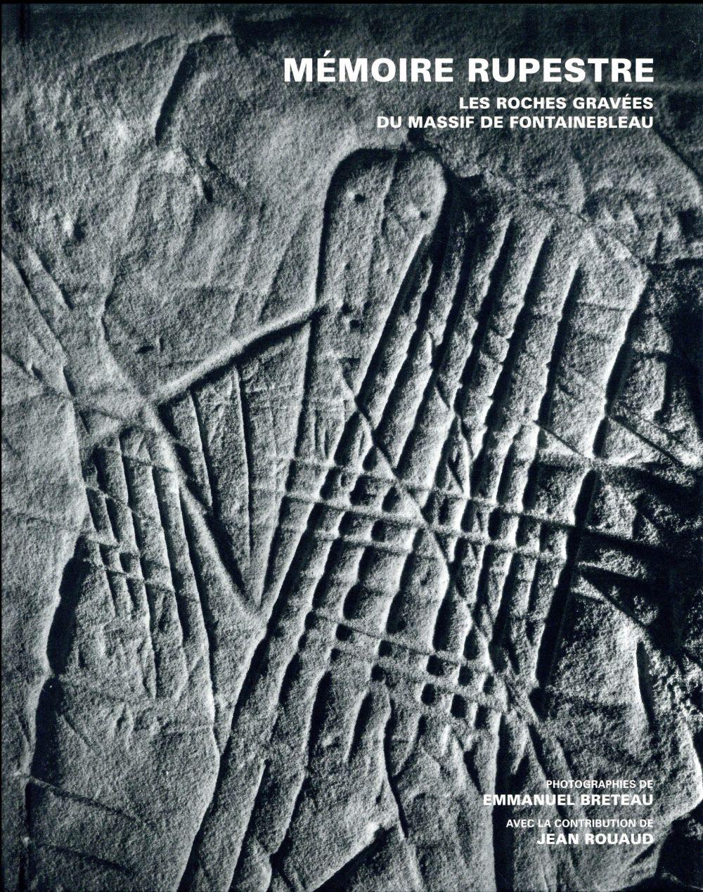 Mémoire rupestre : les roches gravées du massif de Fontainebleau