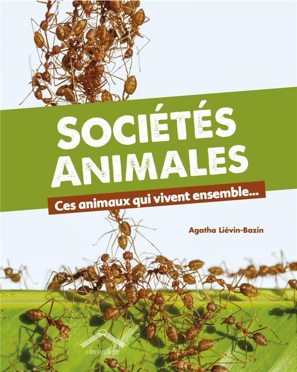 SOCIETES ANIMALES