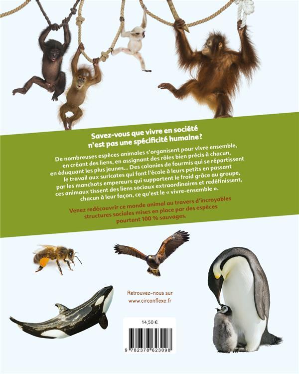 sociétés animales