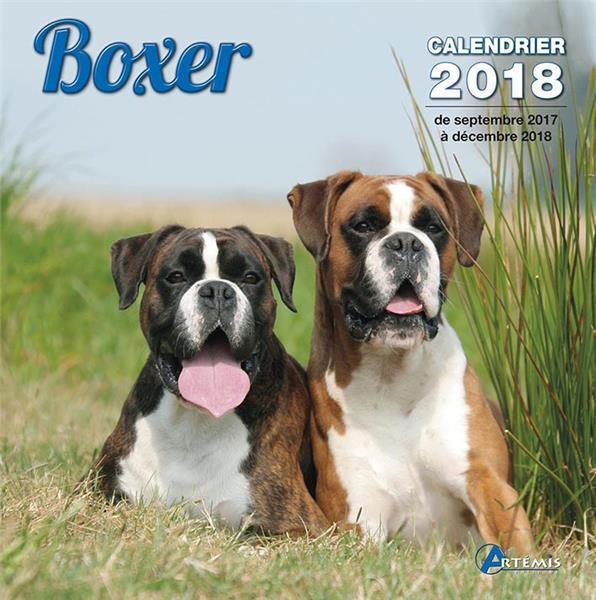 Boxer (édition 2018)
