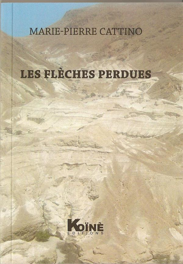 Les flèches perdues - Marie-Pierre Cattino - Koine - Grand format - Place  des Libraires