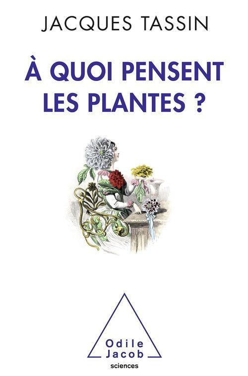 à quoi pensent les plantes ?