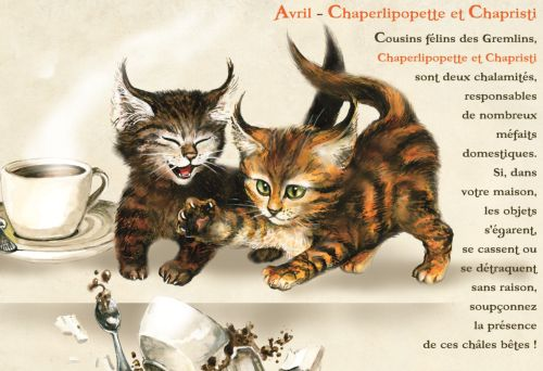 Agenda scolaire les chats enchantés 2011/2012