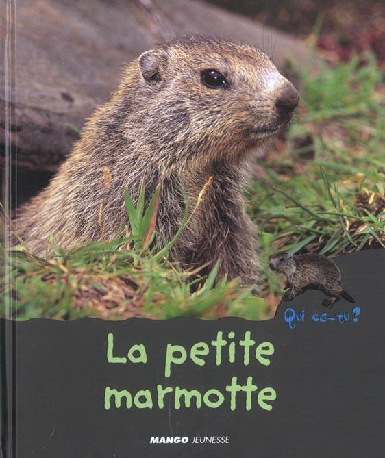 La petite marmotte