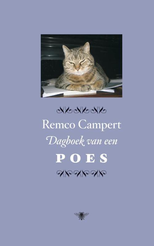 Grote poesje Gallisch