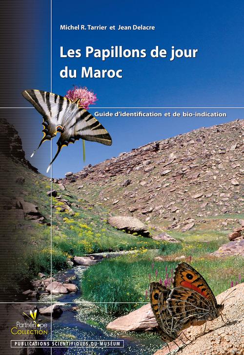 Les Papillons de jour du Maroc