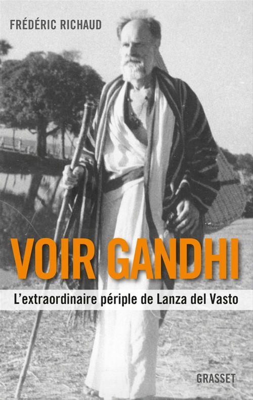 Voir Gandhi  - Frédéric RICHAUD