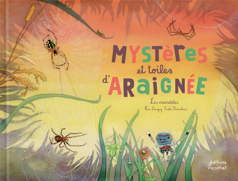 MYSTERES ET TOILES D'ARAIGNEE ! LES ARANEIDES