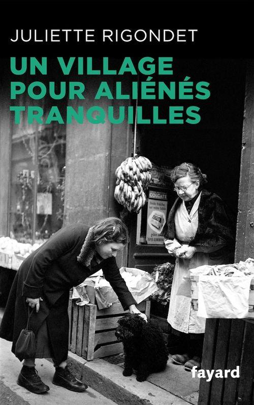 Vente Livre Numérique : Un village pour aliénés tranquilles  - Juliette Rigondet